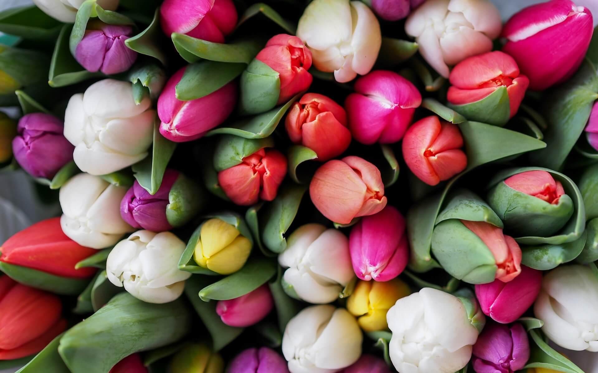 Maries Florist